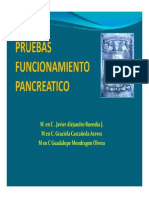 PRUEBA DE FUNCION PANCREATICA