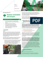 Factsheet CdA 1 - Español
