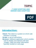 Client Side Scripting and Server Side Scripting