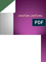 Anatomi jantung.ppt