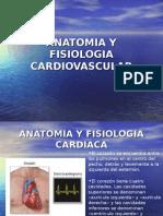 Taller EKG Básica