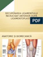 Protocoale de Tratament Pentru Ligamentoplastie