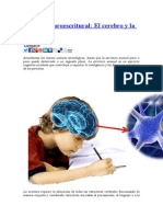 Sistema neuroescritural.docx