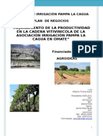 ASOCIACIÓN IRRIGACIÒN PAMPA LA CAGUA-2015.docx