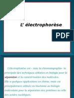 L' Électrophorèse