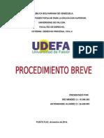 EL PROCEDIMIENTO BREVE.docx