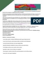 CURSO-RECMIN.pdf