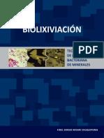 LIBRO Final Biolixiviacion Final RV