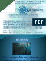 Exposicion Buses