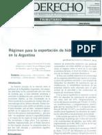 Regimen de Exportacion de Los Hidrocarburos en Argentina