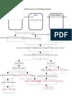 Pathophysiology of Nephrolithiasis