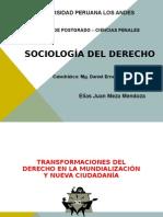 Transformaciones del derecho en la mundialización y nueva ciudadanía.ppt