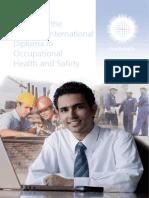 IDIP Syllabus Guide.pdf
