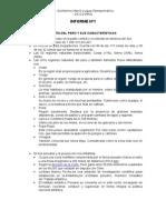 Informe Personal Nº1