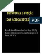 1)_Estrutura_Funcao_Acidos_Nucleicos_2_[Modo_de_Compatibilidade][1]