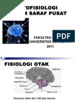 Patofisiologi Sistem Saraf 2011