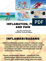 Inflamation, Fever and Pain (2011)
