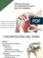 Fisiopatología  Hombro