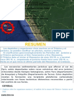 analis de cuencas sediemetarias.pptx