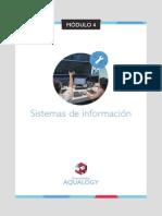 Sistemas de Información c7_m4