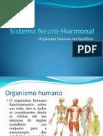 (5) - 2008-2009 - 9º Ano - Sistema Neuro-Hormonal
