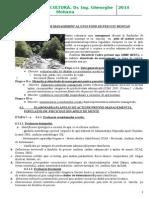Curs 6 Plan de management.docx