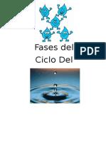 fasesdelciclodelagua