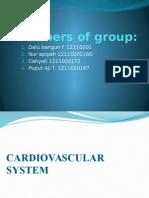 Cardiovascular Presentation