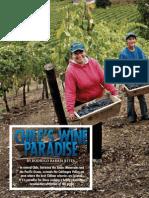 Chiles Wine Paradise