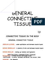 Connective Tissue Revised