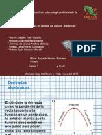 Aplicaciones en Gral Del Calculo Diferencial 4cht Vespertino