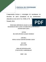 Tesis Comprensión Lectora y Estrategias de Enseñanza - José Antonio Lázaro Cisneros - Viernes 08 de Agosto de 2014