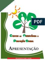 Apresentação Executiva2012