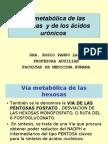 Via Metabolic A de La Hexosas y de Los Acidos Uronicos