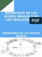 Biosintesis de Los Acidos Grasos y de Los Trigliceridos