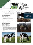 Sale Updates HP Online Heifer Sale June 2015