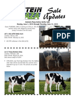 Sale Updates HP Online Heifer Sale June 2015