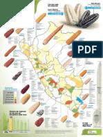 Variedades de maíz en Perú