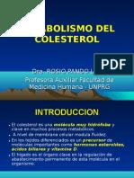 Metabolismo Del Colesterol