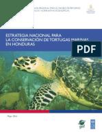 Estrategia Nacional Tortugas_PRESS Ultima (3)