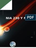 Analisis de Nia 230 y 240 Trabajo 3