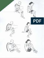 Postura Da Coluna Vertebral