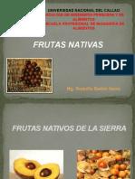 12 FRUTAS NATIVAS.pptx