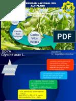 Exposicion del cultivo de soya
