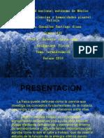 presentacion- termodinamica