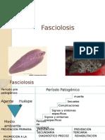 Fasciolosis
