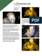 Hallan momia no humana en Cusco, según antropólogo.pdf