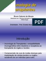imunologia-transplantes