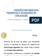 Alteracoes Metabolicas Pigmentos e Alteracoes Da Circulacao - Casos Praticos - Laboratorio