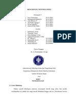 Menghitung Wetness Index
